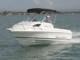 Моторная лодка для всей семьи CruiseCraft Explorer 485