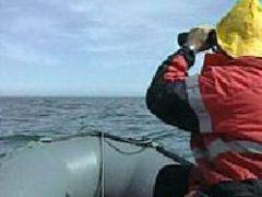 В Мексиканском заливе перевернулась моторная лодка