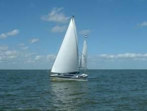 Эстонская яхта столкнулась с кабаном