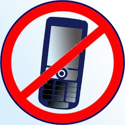 Варшавские водители объявили табу на мобильники.