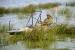 Каяк Колибри Fish-n-Go!, рыбацкий (одноместный), камуфляж